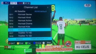 Photo of Football HD Horn Sports Biss Key On NSS 12 57.0°E